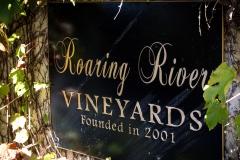Roaring-River-24